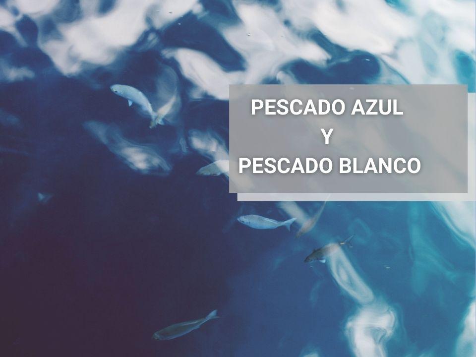 Clasificación-Del Pescado-Pescado-Azul-Pescado-Blanco