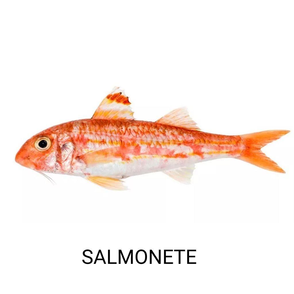 pescado-azul-salmonete