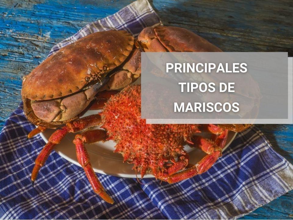 Principales-Tipos-De-Mariscos