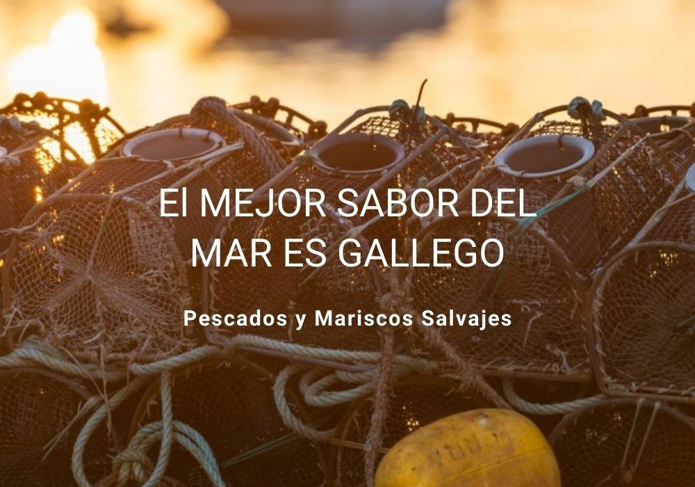 Pescado y Marisco Gallego Pescaderia Online Coyomar